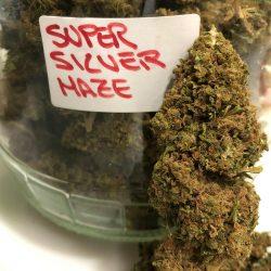 Cannabis Light Super Silver Haze